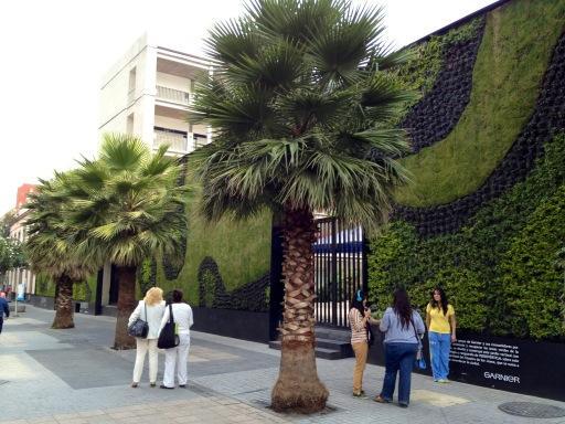 Muros verdes invaden la ciudad de m xico for Diseno de muros verdes
